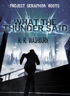 thunder ebook cover